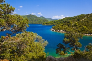 mljet island nature beauty